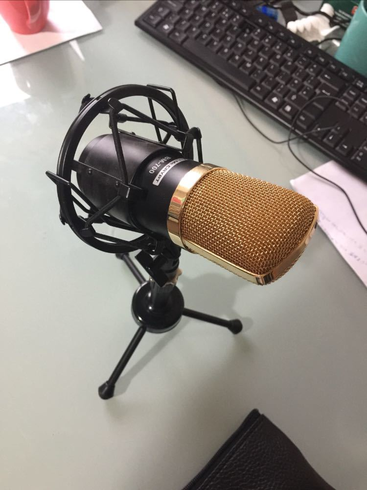 Original 2007 (assembled in Germany)BM-700 Professional condenser microphone in london
