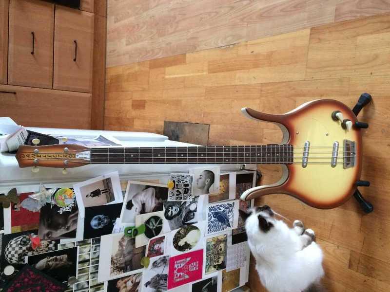 danelectro-longhorn-bass-58-07943453.jpg