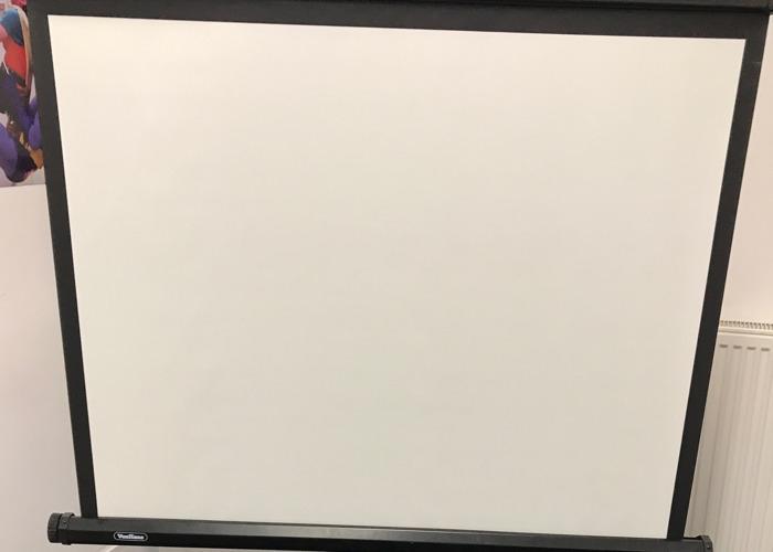 67 projector-screen-03964749.JPG