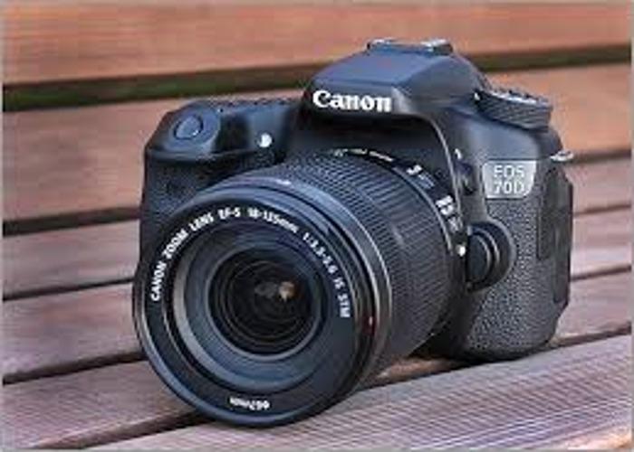 canon 70d--16943044.jpeg