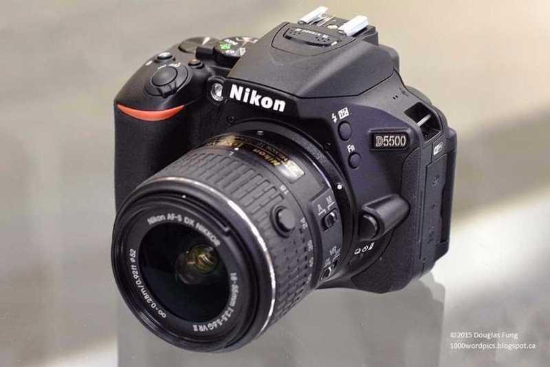 nikkon d550-70260209.jpg