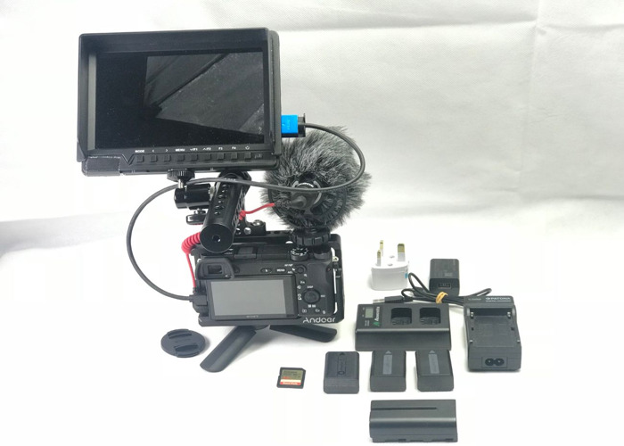sony a6300-4k-hd-video-cage-rode-mic-monitor-44797970.JPG