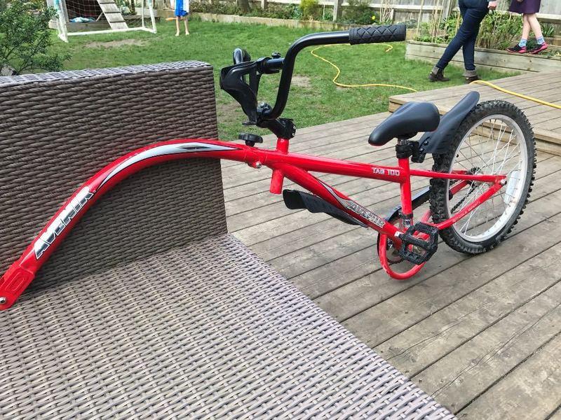 tag a-long-bike-47459038.jpg